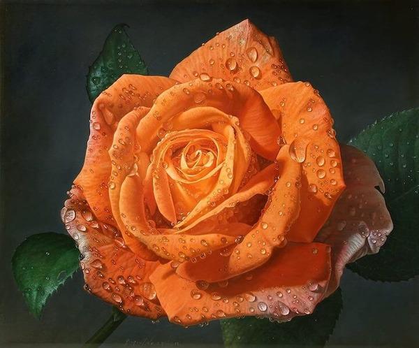 高精細!水滴をまとう写実的で美しいバラの花の油絵 (8)