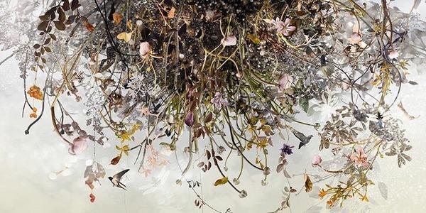 木々や花々を組み合わせて作られたコラージュ画像 (7)