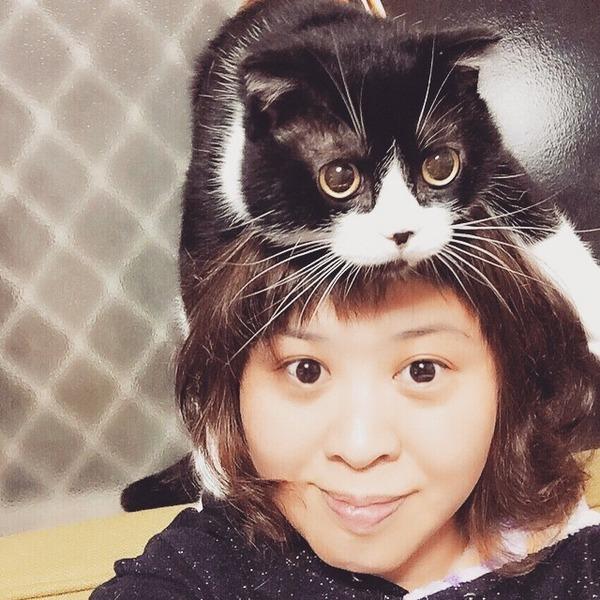 猫帽子 16