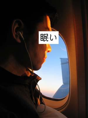 朝日に向かって飛行中
