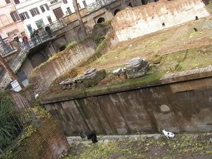 2006_301ローマ011