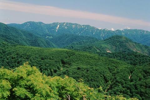 白神山地2