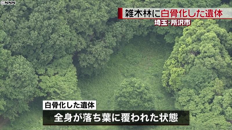 【悲報】隣のトトロのモデルになった雑木林で白骨化した人の骨が見つかる