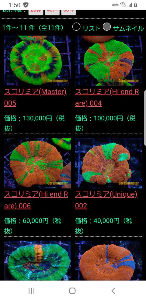 【画像】10万円もらったらサンゴいっぱい買うんだ!