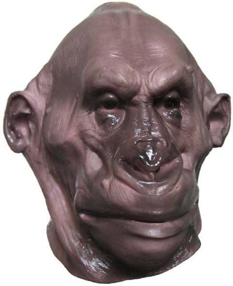 【画像あり】ゴリラの顔の毛を全部取った結果wwwwwwwwwwwww
