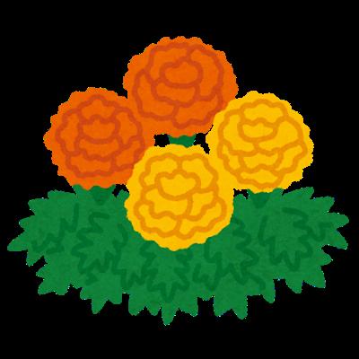 flower_marigold