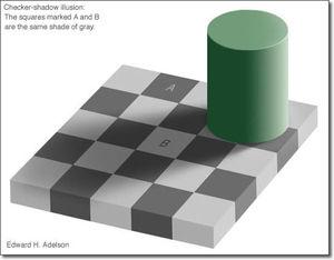 目で捉える物質の色は本当にそういう色をしてるのか脳が勝手に判断してるだけなのか