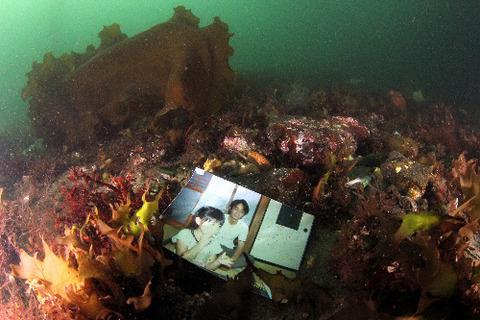 朝日新聞の「海底に眠る写真」がどうも怪しい。こっち向いてるし、上下逆でも裏表でもない (※画像あり)