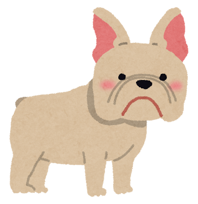 dog_french_bulldog