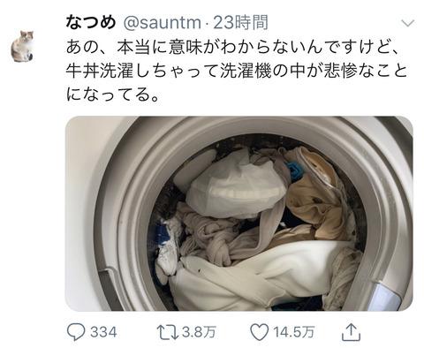 【悲報】Twitter民「間違って牛丼洗濯しちゃった」←145万いいねww (※画像あり)