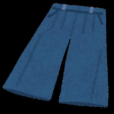 fashion_gaucho pants