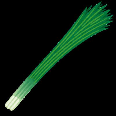 vegetable_hoso_negi