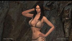 Dragon's Dogma Online__19