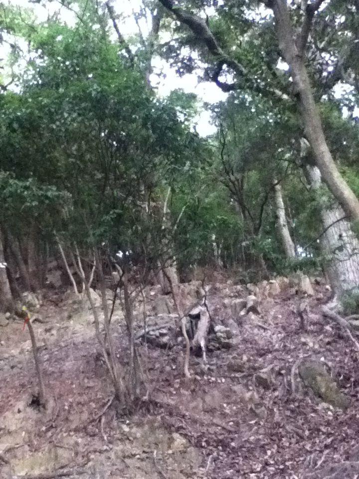 鶏籠山20121006