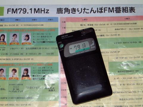 image-RADIO