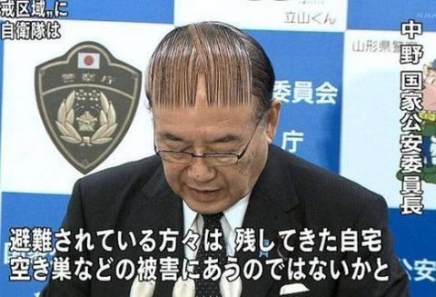 ob_4694f3_les-coiffures-les-plus-ridicules-au-mo