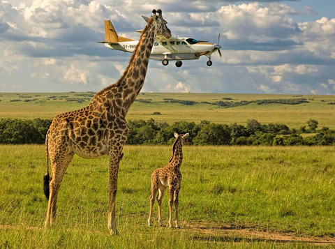 Outsourcing Seatbelt Checks, Masai Mara, Kenya By Graeme Guy (1)