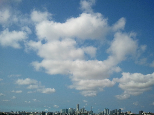 Happy end のその後・・・☆-2012-07-30 08.27.12.jpg