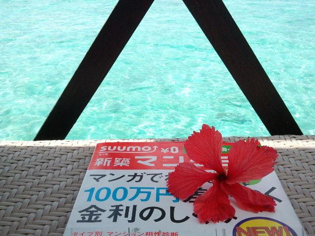 Happy end のその後・・・☆-2012-08-28 13.58.04.jpg