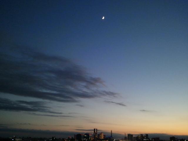 Happy end のその後・・・☆-2012-11-18 16.57.51.jpg