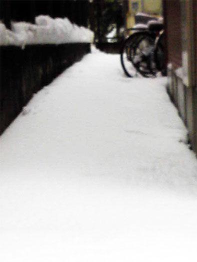 2014年2月8日~9日の雪(足跡なし)