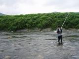 鮎釣り風景