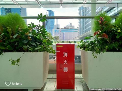 ZenFone Max M1で撮影 (5)