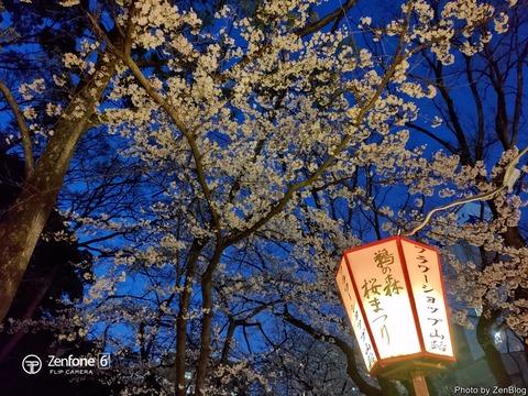 ZenFone 6で撮影 夜桜007