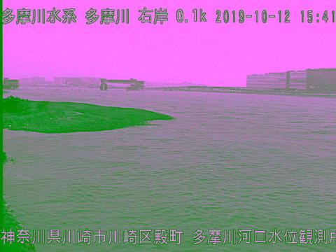 cam_tama-river-Estuary_OBS