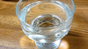 秋鹿 純米吟醸 槽搾直汲の炭酸