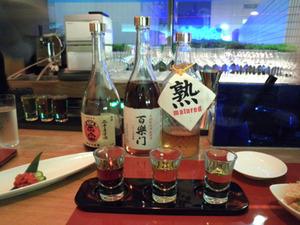 達磨正宗 20年古酒