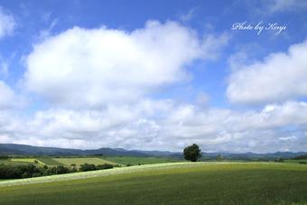雲浮かぶ丘