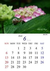 2010年6月カレンダー