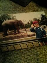 象さんとの出会い