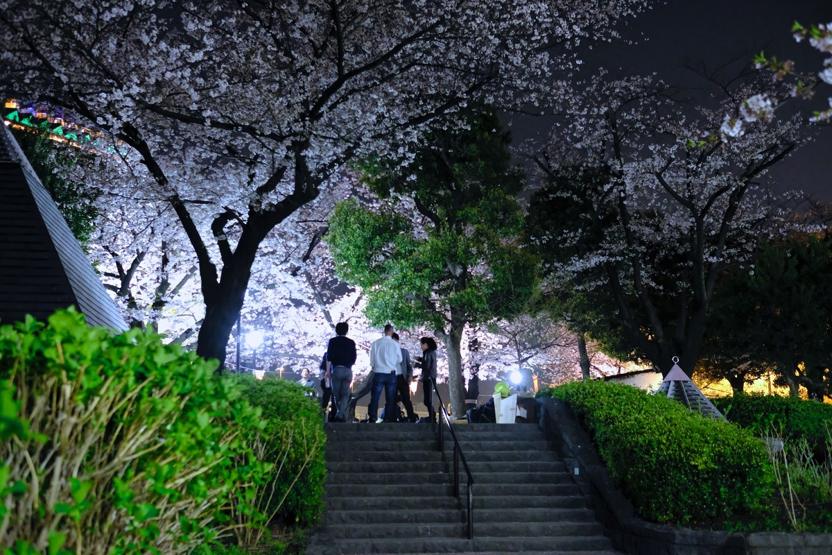 20-14-55__DSF7078_隅田公園