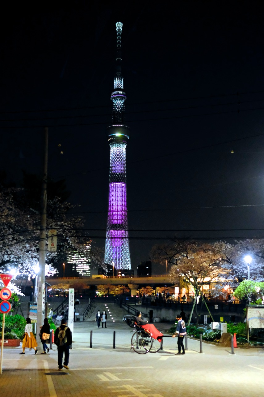 夜桜隅田公園__09__DSF7005