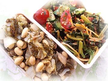 白菜と大豆の旨塩蒸し弁当