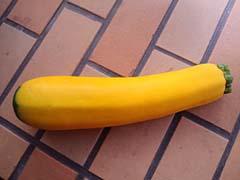 黄色いズッキーニ