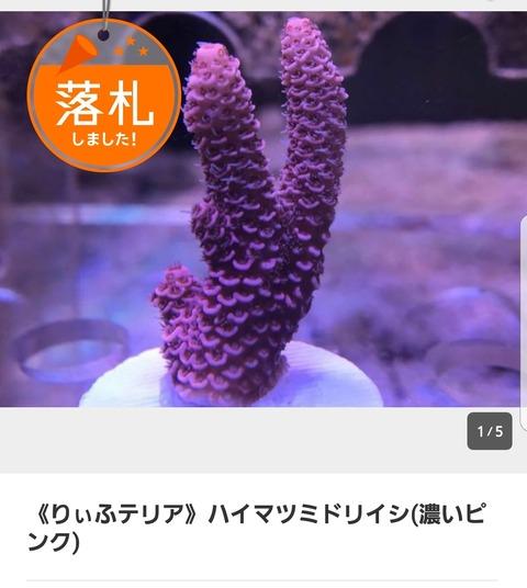 Screenshot_20180312-083351