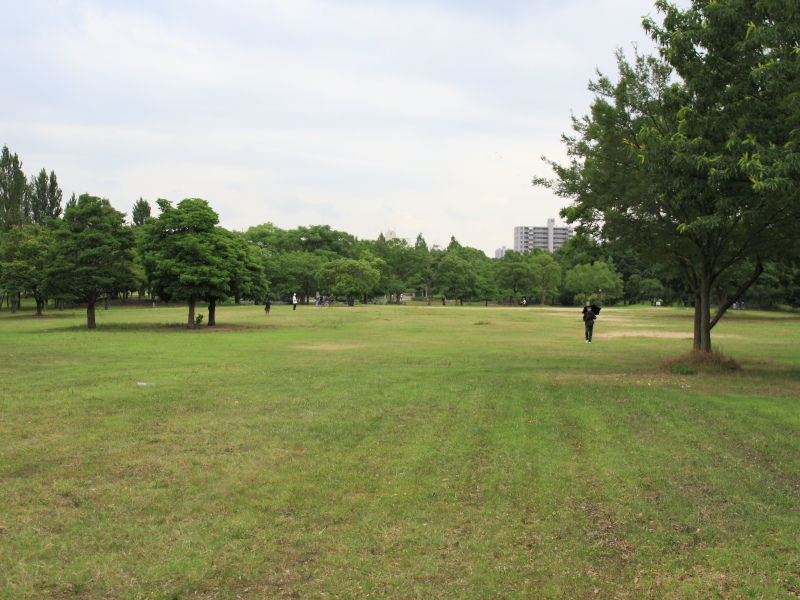 大阪鶴見緑地公園犬散歩