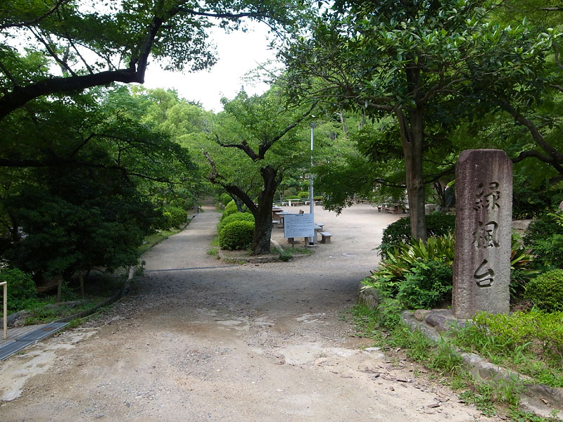 池田市五月山公園犬散歩