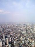 ソラマチ30Fから見た下町の風景