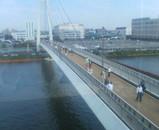 ロイヤルから戸田大橋を見る