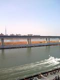 江戸川から見たスカイツリー