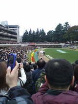 オグリキャップ様東京競馬場にご来場。
