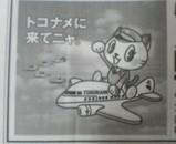 パイロットとこたん