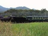 C58 363が牽引する秩父鉄道パレオエクスプレス
