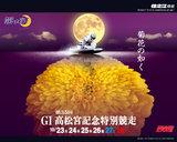 菊花の如く。第35回高松宮記念特別競走