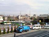 江戸川競艇場そばで咲くさくら