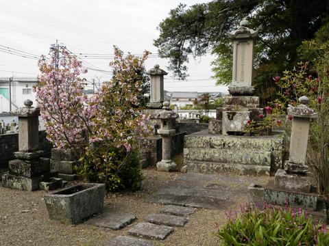 ②83松平家奥方墓所
